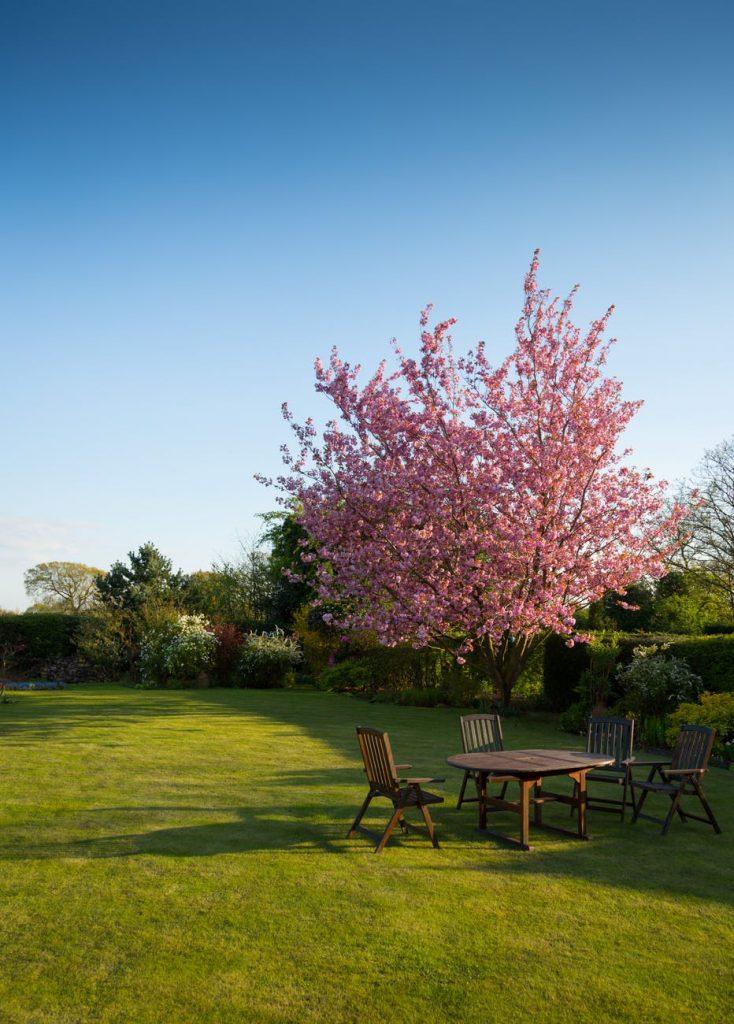 Brug din have både vinter og sommer med en pavillon